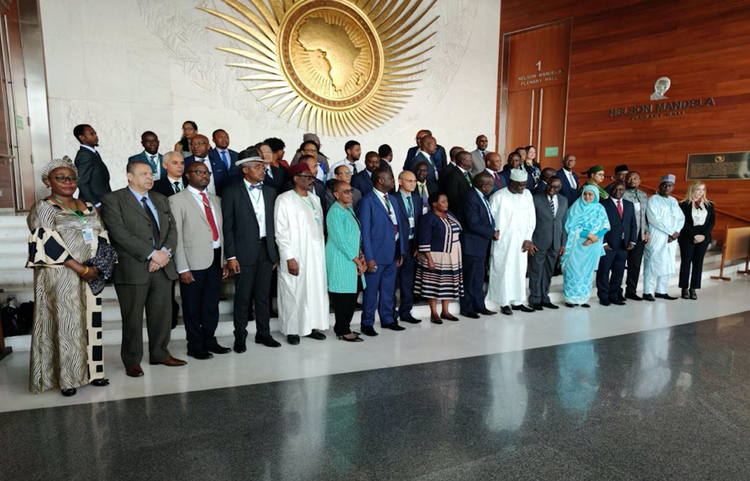 regional organisations african union